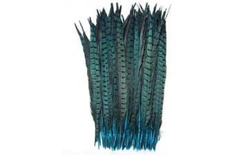 (Lake blue) - Celine lin 10PCS Natural Pheasant Feathers Pheasant Tails 14-16inch(35-40CM),Lake Blue