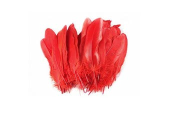 (Red) - Celine lin 100PCS Dyed Home Decor Goose Feather For DIY Art,Home Party or Wedding 15cm - 20cm ,Red