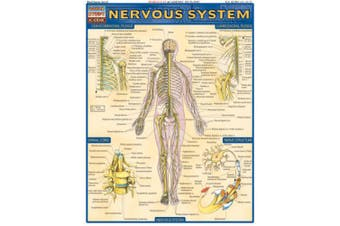 Nervous System Laminate Reference Chart (Quickstudy: Academic)