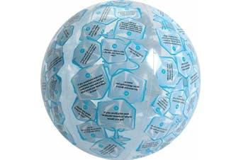 American Educational SR-1442 Vinyl Clever Catch Ice Breaker Intermediate Ball, 60cm Diameter