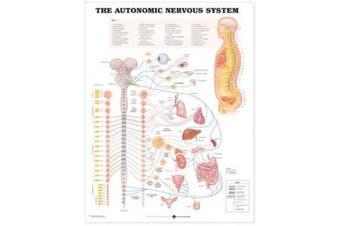 The Autonomic Nervous System Anatomical Chart