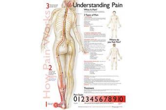 Understanding Pain Anatomical Chart