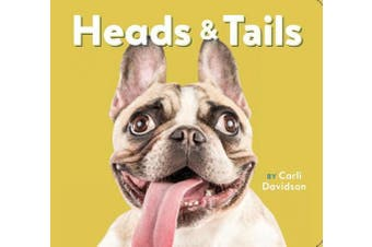 Heads & Tails [Board book]