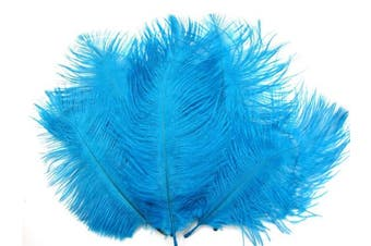 (Blue) - ALL in ONE 10pcs 10-12inch(20-25cm) Natural Ostrich Feathers for DIY Home Party Wedding Decorations (Blue)