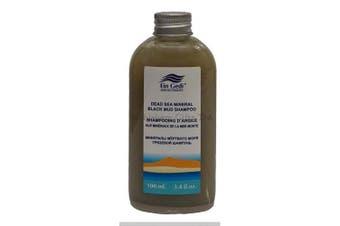 (Mud Shampoo) - Ein Gedi Dead Sea Cosmetics Mineral Hair Skin and Body Care 100ml by Bethlehem Gifts TM (Mud Shampoo)