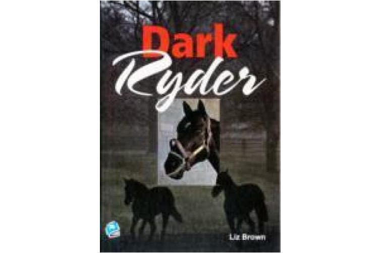 Dark Ryder (High Interest Teenage Series)