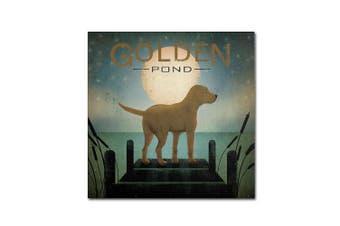 (60cm  by 60cm ) - Trademark Fine Art Moonrise Yellow Dog Golden Pond by Ryan Fowler Wall Decor, 60cm by 60cm