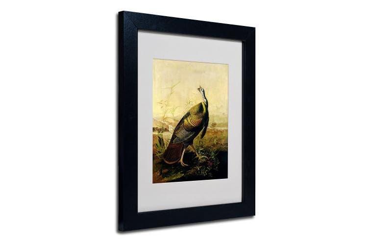 (28cm  by 36cm ) - Trademark Fine Art American Wild Turkey Cock Matted Artwork by John James Audubon with Black Frame, 28cm by 36cm