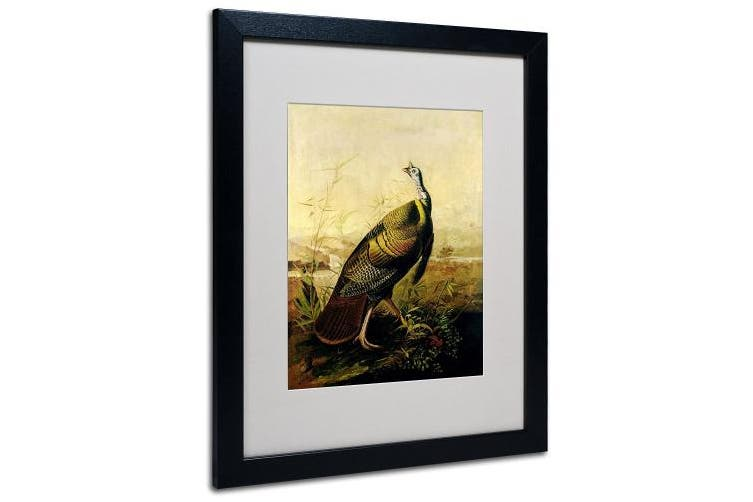 (41cm  by 50cm ) - Trademark Fine Art American Wild Turkey Cock Matted Artwork by John James Audubon with Black Frame, 41cm by 50cm