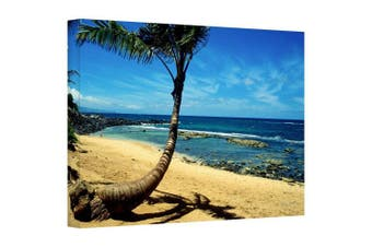 """(12x18) - Art Wall """"Palm Tree in Paradise"""" Gallery Wrapped Landscape Canvas Art by Kathy Yates, 30cm by 46cm"""