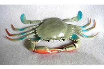 Plastic Blue Crab hollow plastic with squeak 20cm wide - F1611 B82