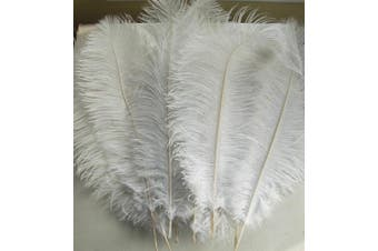 (25cm  - 30cm , White) - AWAYTR 10pcs Natural Ostrich Feathers for Wedding Centrepieces Home Decoration (25cm - 30cm , White)