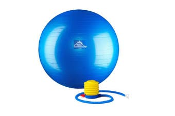 (85 cm, Blue) - Black Mountain Products Professional Grade Stability Ball - Pro Series 450kg Anti-Burst 450kg Static Weight Capacity Blue