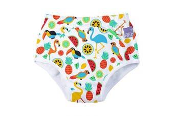 (3+ Years, Tropical Island) - Bambino Mio, Potty Training Pants, Tropical Island, 3+ Years