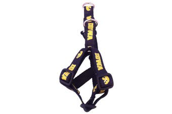 (Iowa Hawkeyes) - NCAA Collegiate Dog Harness (Small)