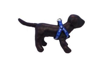 (Duke Blue Devils) - NCAA Collegiate Dog Harness (Small)