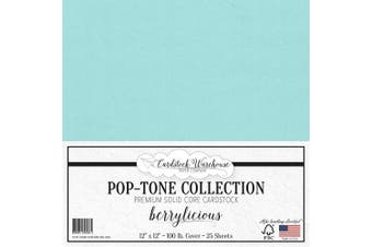 (Berrylicious) - Berrylicious Blue Cardstock Paper - 30cm x 30cm 45kg. Heavyweight Cover - 25 Sheets from Cardstock Warehouse