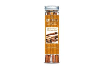 (Two Dashes of Cinnamon) - ScentSicles Scented Ornaments Aroma Diffusers, Two Dashes of Cinnamon Fragrance, Bottle of 6