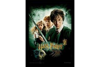 """(Chamber of Secrets, Framed) - Harry Potter """"Chamber of Secrets"""" Framed Print, 30 x 40 cm"""