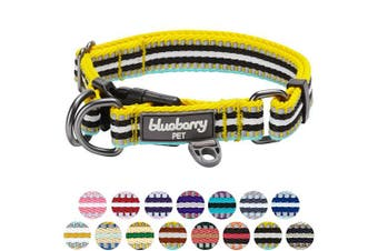(Regular Collar - Large, Yellow and Azure) - Blueberry Pet 10 Colours Multi-Coloured Stripe Collection - 3M Reflective Collars, Harnesses, Leashes, Seatbelts or Lanyards