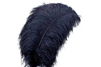 (10Pcs, Black) - AWAYTR Natural Big Stem Plum Ostrich Feathers 21-24 inch(53-60cm) for Home Wedding Decoration (10Pcs, Black)