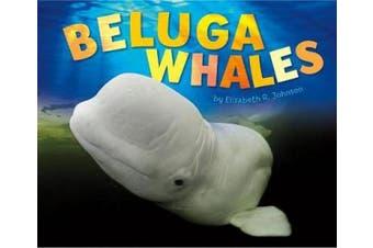 Beluga Whales (Pebble Plus: Sea Life)