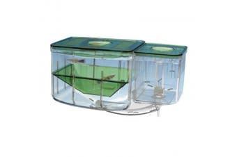 (Clear) - Pen-plax An2 Aqua Nursery And Hatchery Aquarium