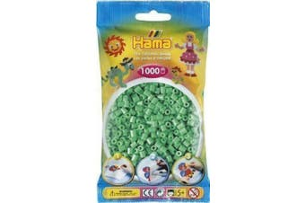 Light Green 1000 Bead Bag