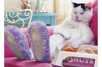 Cat Wearing Slippers Funny Just For Fun Card - Greeting Card By Avanti Press