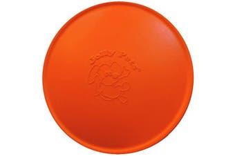 (24cm , Orange) - Jolly Pets Jolly Flyer Rubber Floating Disc