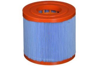 Pleatco Pww10-m Replacement Cartridge For Waterway Skim Filter 10 (microban), 1