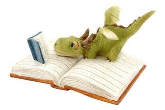 Top Collection Miniature Fairy Garden And Terrarium Mini Dragon Reading Figurine