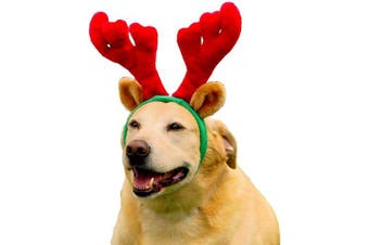 (Large) - Outward Hound Holiday Christmas Antlers Wearable Dog Accessories, Brown