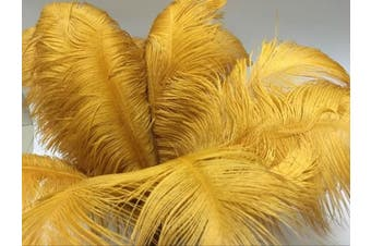 (Glod) - AABABUY 10pcs Ostrich Feathers 18-20 inch (45-50cm) for Home Wedding Party Decoration (Glod)
