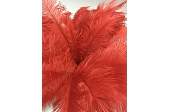 (Red) - AABABUY 10pcs Ostrich Feathers 18-20 inch (45-50cm) for Home Wedding Party Decoration (Red)
