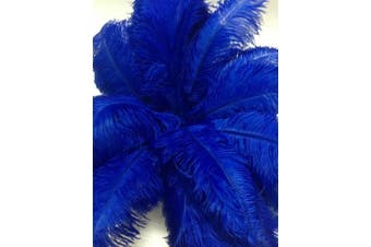 (Blue) - AABABUY 10pcs Ostrich Feathers 18-20 inch (45-50cm) for Home Wedding Party Decoration (Blue)