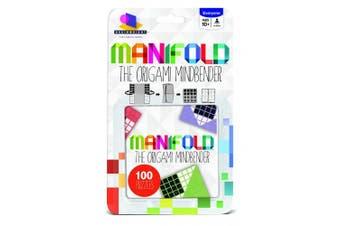 Brainwright Manifold Puzzle