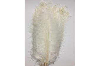 (white) - ADAMAI 50PCS Natural 35cm - 40cm Ostrich Feathers Plume for Wedding Centrepieces Home Decoration (white)