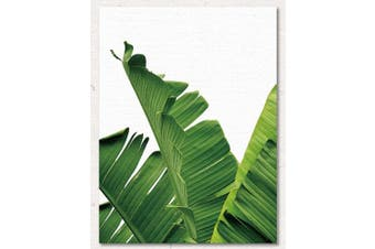 (without frame 50cm  X 60cm , Palm Leaves) - ChezMax Wall Art Oil Painting on Canvas Print Artwork Pictures for Home Decor Green Tropical Plants Palm Leaves 50cm X 60cm