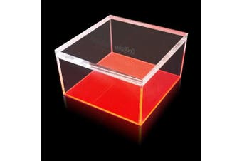 (Medium) - OnDisplay Electric Neon Luxe Clear Acrylic Storage Treasure Box - Medium