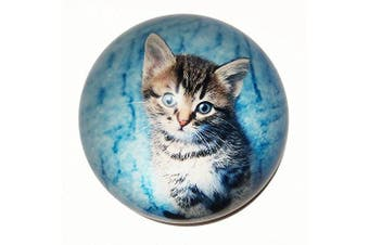 (Cat) - Waltz & F Crystal Cat Paperweight Galss Globe Hemisphere Home Office Table Decoration