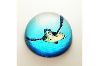 (Sea Turtle) - Waltz & F Crystal Sea Turtle Paperweight Galss Globe Hemisphere Home Office Table Decoration