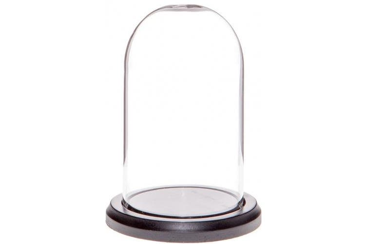 (Black Wood Base) - Plymor Brand 7.6cm x 13cm Glass Display Dome Cloche (Black Wood Base)