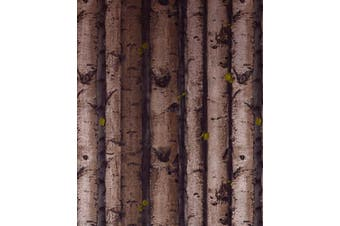 (5067-4) - Crazy Cart PVC Simulation White Birch Tree Bark Wood Wallpaper - Brown