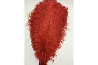 (red) - ADAMAI 100PCS Natural 30cm - 35cm Ostrich Feathers Plume for Wedding Centrepieces Home Decoration (red)