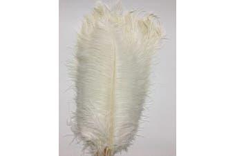 (white) - ADAMAI 100PCS Natural 30cm - 35cm Ostrich Feathers Plume for Wedding Centrepieces Home Decoration (white)