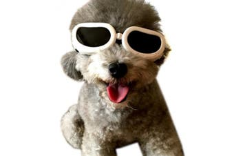 (XS, White) - Alfie Pet by Petoga Couture - Larry Sun Glasses for Dogs and Cats