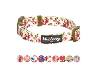 (Regular Collar - Medium, Ivory) - Blueberry Pet Spring Scent Floral Collection - Regular, Personalised Collars and Seatbelts for Dogs