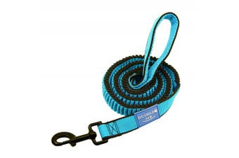 (Blue) - BIG SMILE PAW Dog Leash Bungee Shock Absorption,1.2m Long
