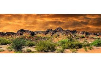 (46cm H x 60cm W) - Reptile Habitat, Terrarium Background, Orange Desert Sky with Cactus - (Various Sizes)